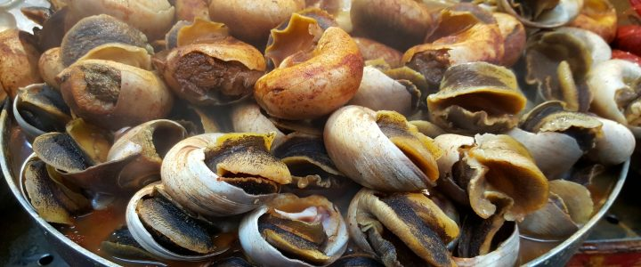 Where to eat and drink in Isla Canela – Cultural dishes – Snail Festival!!